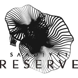 Saadiyat Reserve Logo - Ar
